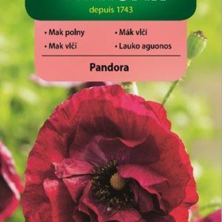 Mák vlčí Pandora - červený (Vilmorin)