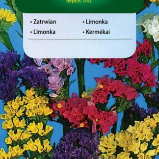 Limonka chobotnatá - směs (Vilmorin)