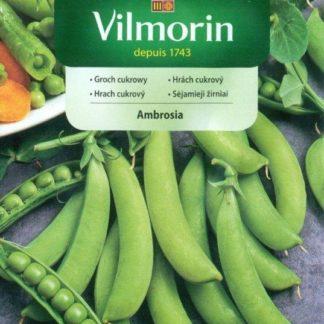 Hrách cukrový Ambrosia (Vilmorin)