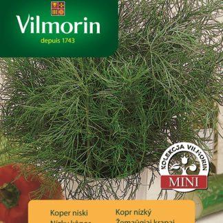 Kopr nízký Picant - do květináčů (Vilmorin)