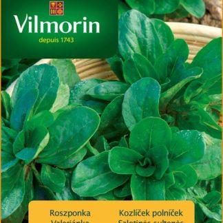 Kozlíček polníček Vit (Vilmorin)