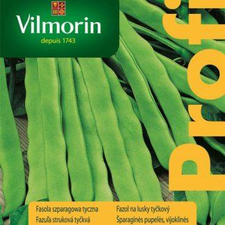 Fazol na lusky Mistica - tyčkový, zelený (Vilmorin)