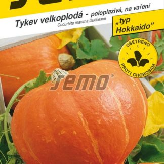 Tykev velkoplodá Amoro F1 - tvar srdce, poloplazivá, typ Hokkaido (Semo)