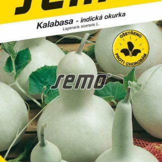 Kalabasa Birdhouse Bottle - indická okurka (Semo)