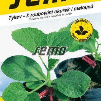 Tykev Sprinter F1 - pro roubování okurek i melounů (Semo)
