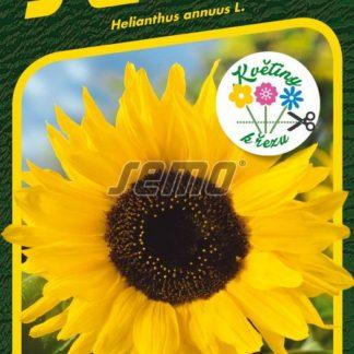 Slunečnice roční Sun - žlutá (Semo)