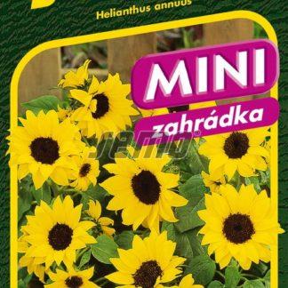 Slunečnice roční Ballad F1 - nízká, žlutá (Semo)