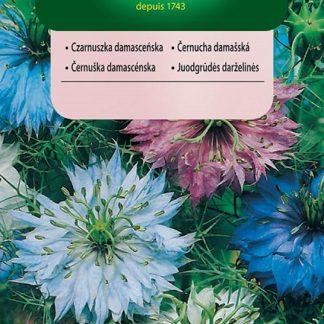 Černucha damašská - směs (Vilmorin)