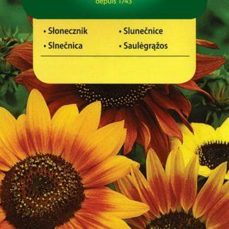 Slunečnice roční - směs (Vilmorin)