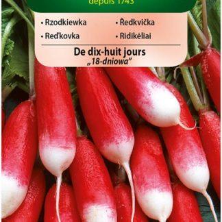 Ředkvička De dix-huit jours - 18denní, červenobílá (Vilmorin)