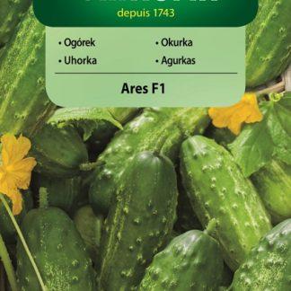 Okurka polní Ares F1 (Vilmorin)