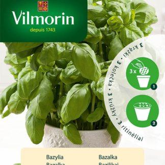Bazalka pravá na výsevním kolečku (Vilmorin)