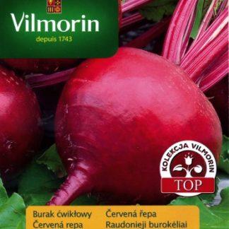 Červená řepa Nobol (Vilmorin)