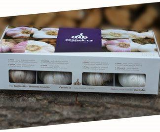 Velká česneková krabička - 8 odrůd (Kozák)
