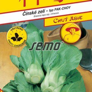 Čínské zelí Cash F1 - typ Pak-Choy (Semo)