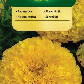 Aksamitník vzpřímený Lemon - žlutý (Vilmorin)