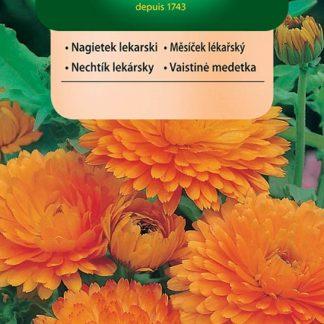 Měsíček lékařský - oranžový, na sušení (Vilmorin)