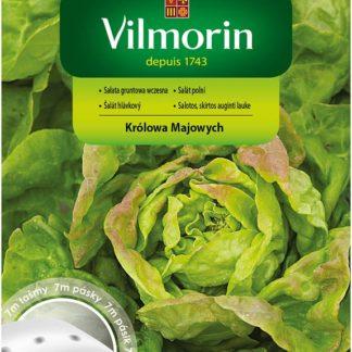 Salát polní Král máje na výsevném pásku (Vilmorin)