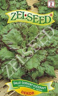 Salát kadeřavý Dekor - letní, listový, červený (Zelseed)