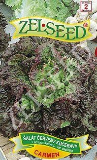 Salát kadeřavý Carmen - letní, listový, červený (Zelseed)