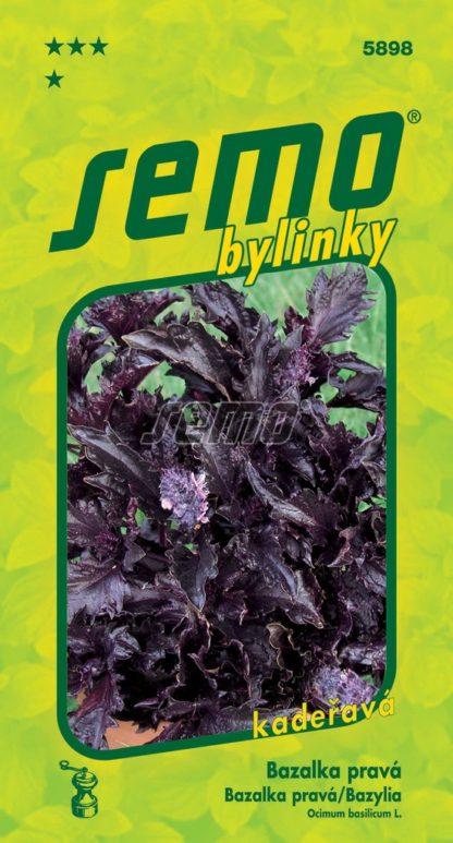 Bazalka pravá Purple Ruffles - purpurová, kadeřavá (Semo)