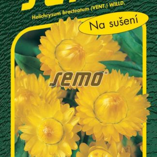 Slaměnka - žlutá (Semo)