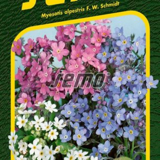 Pomněnka alpská - směs (Semo)