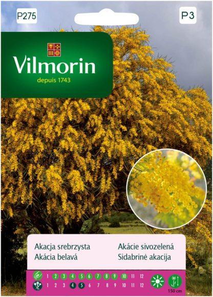 Akácie sivozelená (Vilmorin)