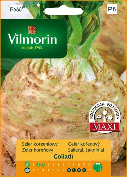 Celer kořenový Goliath (Vilmorin)