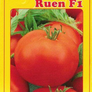 Rajče tyčkové Ruen F1 - středně vysoké (GEOSEMselect)