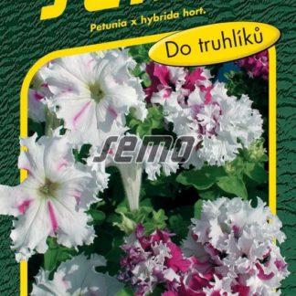 Petúnie velkokvětá Pozdrav z Jaroměře - třepenitá směs (Semo)