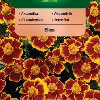 Aksamitník rozkladitý Eliza - jednotlivý (Vilmorin)