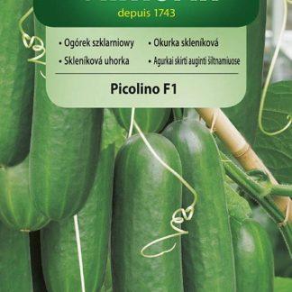Okurka skleníková Picolino F1 - hadovka (Vilmorin)