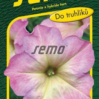 Petunie mnohokvětá Debonair Dusty Rose F1 - růžovo-žlutá (Semo)