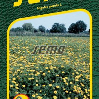 Aksamitník rozkladitý Ground Control - žlutý, proti půdním háďátkům (Semo)