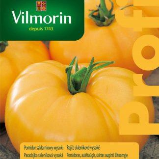 Rajče skleníkové vysoké Orange Wellington F1 - oranžové (Vilmorin)