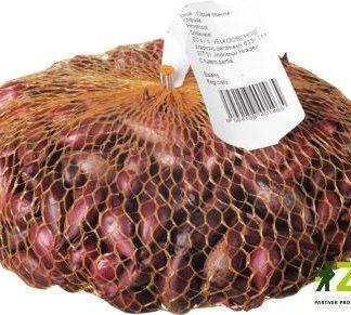 Cibule sazečka Piroska - červená, 250 g (ZC)