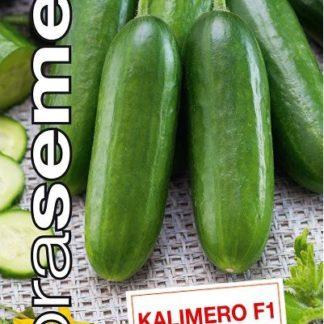 Okurka salátová Kalimero F1 - Mikro hadovka (Dobrasemena)