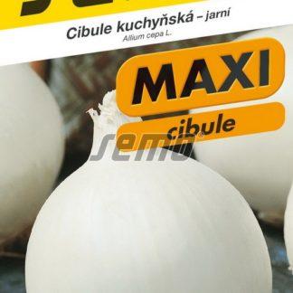 Cibule kuchyňská Southport White Globe - obří, bílá, jarní (Semo)
