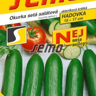 Okurka setá salátová Minisprint F1 - hadovka, skleníková, krátká (Semo)