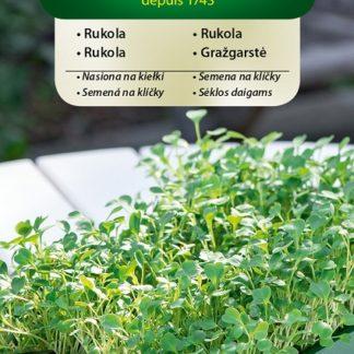 Rukola - semena na klíčky (Vilmorin)