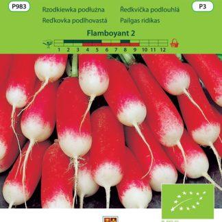 Ředkvička Flamboyant 2 - červeno-bílá, podlouhlá, BIO (Vilmorin)