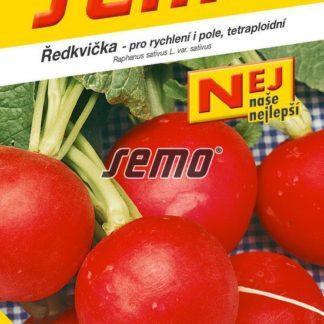 Ředkvička Kvarta - raná, červená, tetraploidní (Semo)