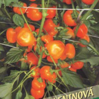 Paprika zeleninová Kulíšek - drobné plody, oranžová (Libera)