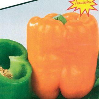 Paprika zeleninová Oregon - sladká, kvadratická, silnostěnná, oranžová (Libera)