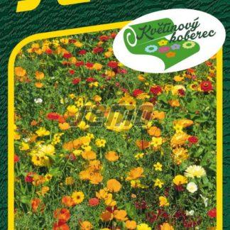 Tisíce světel - květinový koberec, směs (Semo)