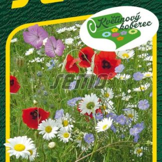 Květena venkova - květinový koberec, směs (Semo)